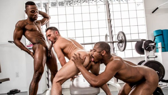Miller Axton, Colby Tucker, Adonis Couverture